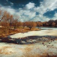 В весеннем парке :: Виталий Нагиев