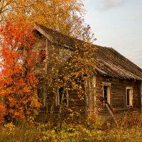 Осень... :: Альберт Сархатов