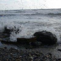Морские волнения :: pich