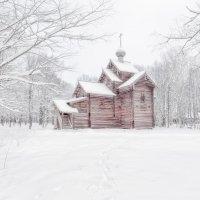 Зимнее видение :: Евгений Никифоров