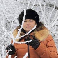 Красивая зима :: Андрей Тер-Саркисов