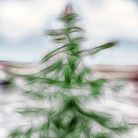 С Рождеством!!! :: Alex Sash