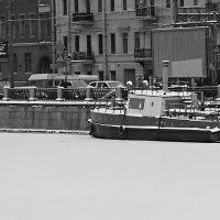 Белый плен :: Михаил Лобов (drakonmick)