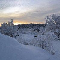 Cреди снегов :: Ольга
