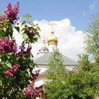 Храм :: Николай Прийменко-Эйсымонт