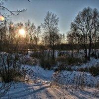 Январское солнышко :: Андрей Куприянов