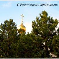 С Рождеством Христовым!!! :: Тамара (st.tamara)