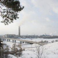 Зима в Сибири :: Роман Червов