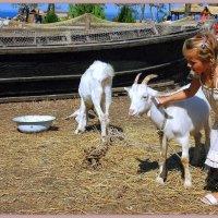 Девочка с козами :: Роман Величко