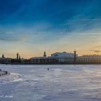 Зимний Питер :: Дмитрий Рожков
