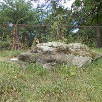 Языческий жертвенный камень :: Викторина Срыбна
