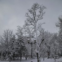 Этюд с фонарём 2 :: Андрей Lyz
