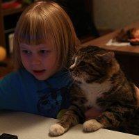 И тут кот узнал - что такое новогодние каникулы... :: Galina S*