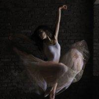 Фламинго :: Александр Иванов
