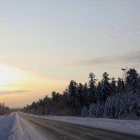 зимняя дорога... :: Олег Петрушов