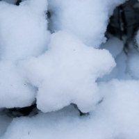 Снежная звезда :: Alice Darling