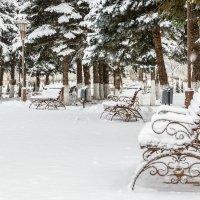 Зима. :: Геннадий Оробей