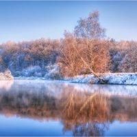Начало зимы :: Сергей Шабуневич
