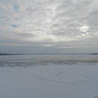 Волга :: наталья калета