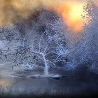 Закатная сказка....4 :: Андрей Войцехов