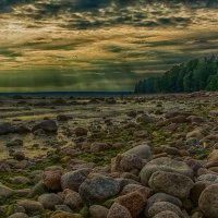Пейзаж Финского залива :: Дмитрий Рутковский