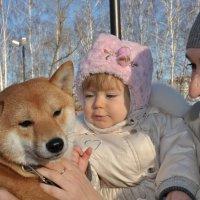 с сибочкой :: Юлия Fox(Ziryanova)
