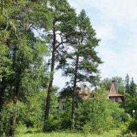 За деревьями спряталась усадьба Е.К. Барсовой :: Елена Смолова