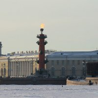 Мороз и солнце :: Вера Моисеева