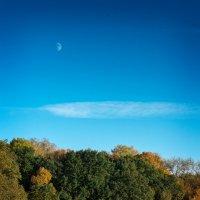 Луна и отражения. :: Андрий Майковский