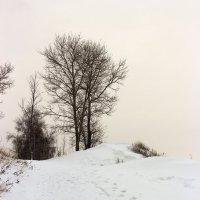 Путь к вершине :: Олег Манаенков