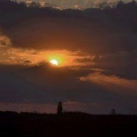 закат из моего окна... :: Александр Александр