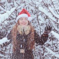рождественская сказка :: Natasha Kramar
