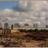 На руинах Черкизона :: Николай Дони