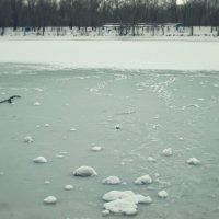 Озеро :: Polina Rastaturova