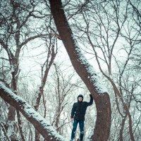 В лесу :: Анзор Агамирзоев