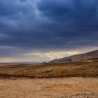 Израиль, пустыня Арава :: Владимир Горубин