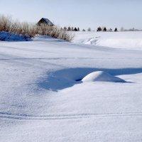 Зимний день 3 :: Валерий Талашов