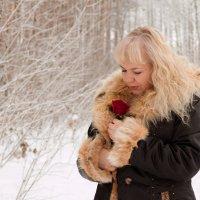 Роза на снегу (10) :: Алексей Волков