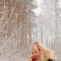Роза на снегу (09) :: Алексей Волков