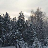 И солнце, словно масло в молоке, повисло в пелене туманной :: Галина