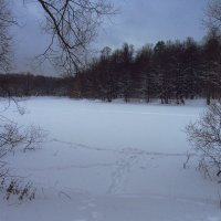 IMG_0061 - Зимний вечер :: Андрей Лукьянов