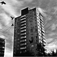 Первый слой Сумрака. Всем выйти из тени. :: Сергей Бажов