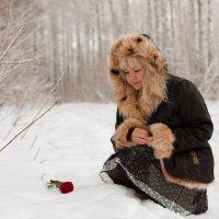 Роза на снегу (05) :: Алексей Волков