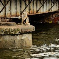 Старый мост :: Дмитрий Близнюченко