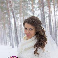 Зимняя свадьба :: Арина Берестяк