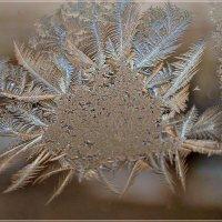 Узор алмазных лепестков :: galina tihonova
