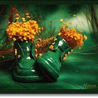 Забавные ботиночки :: Лидия (naum.lidiya)