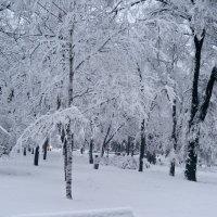 Зима пришла:) :: Vladimir Didenko
