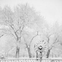 Снежность :: Дмитрий Макеев