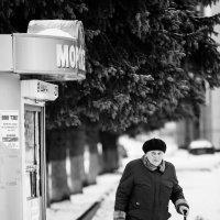************* :: alex_belkin Алексей Белкин